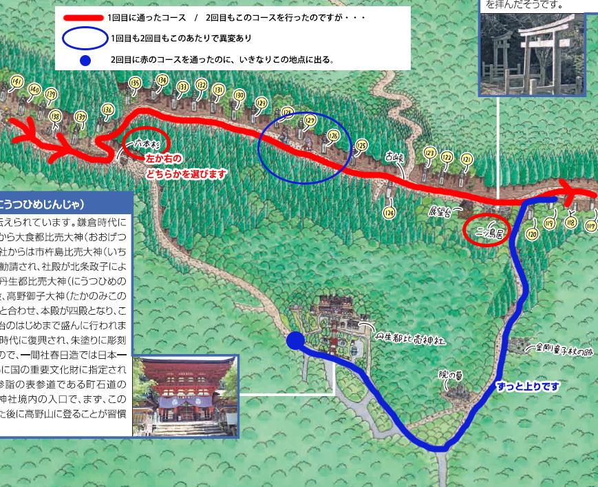 解説MAP